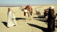 Wüstenverkehr