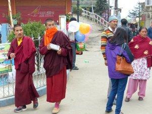 Darjeeling-2015-22