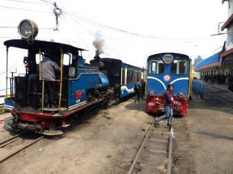 Darjeeling-2015-38