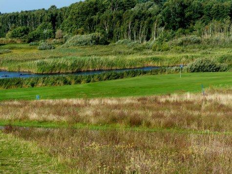 Usedom - Natur pur am Golfplatz