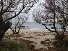 Herbstlicher Strand von Alcudia
