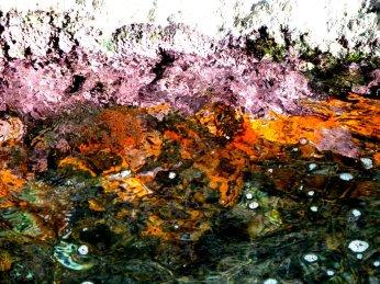 Farbenspiel unter Wasser durch Korallen in der Grotta Rosa