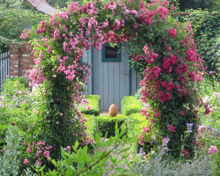 Rankhilfen Produkte Material Pflanzen Mein Schöner Garten