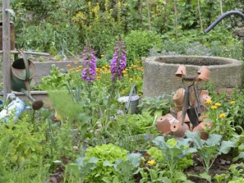 gartengestaltung gemüsegarten gemüsegärten gestalten - mein schöner garten