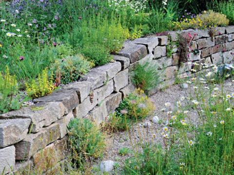 gartengestaltung natürlich naturgarten gestalten - mein schöner garten