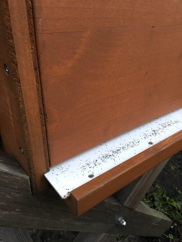 Bienenbox und Varroaschublade