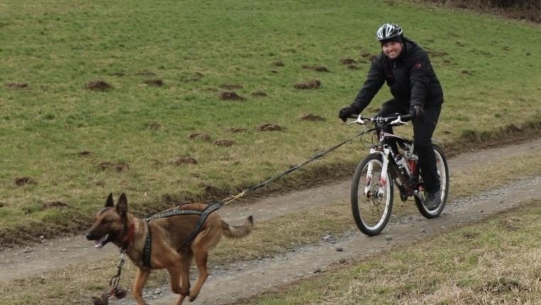 Zughundesport in der Eifel