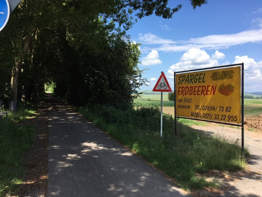 Maifeld-Radweg bei Naunheim Spargel
