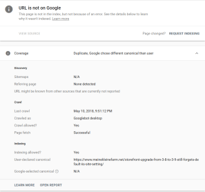 Google Search Console Excluded