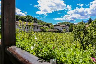Aussicht Auer Frühstückspension Meinrad Südtirol