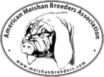 A.M.B.A. Memberships
