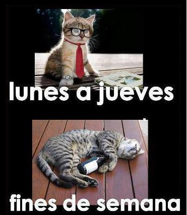 lunes a jueves