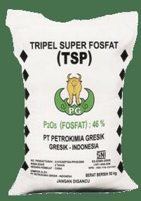 Manfaat dan Cara Menggunakan Pupuk TSP (Triple Super Phosphate) | Artikel Pertanian