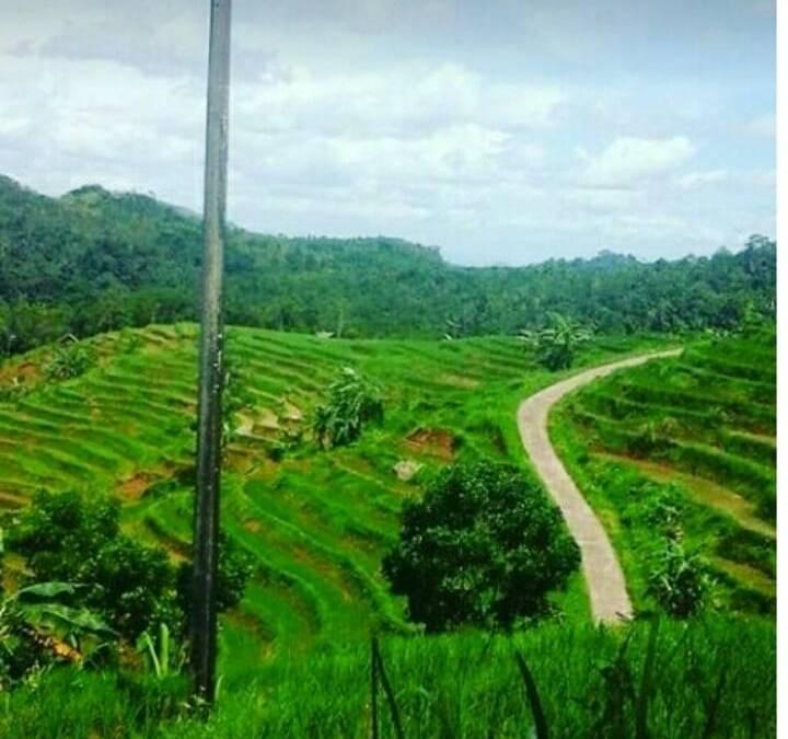 Kajian 5 Potensi Wisata Desa di Mekarmulya