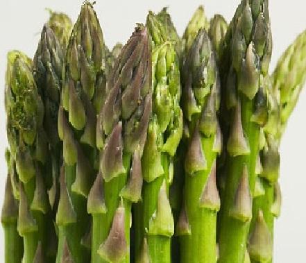 13 Cara Menanam Asparagus dari Biji (Panduan Lengkap) | Artikel Pertanian