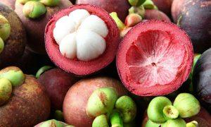 5 Cara Menanam Manggis dari Biji Bagi Pemula | Artikel Pertanian