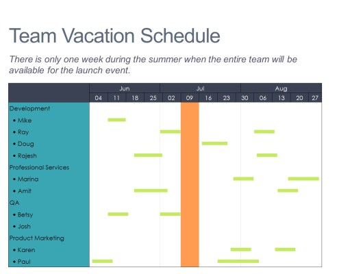 Gantt chart for a project team