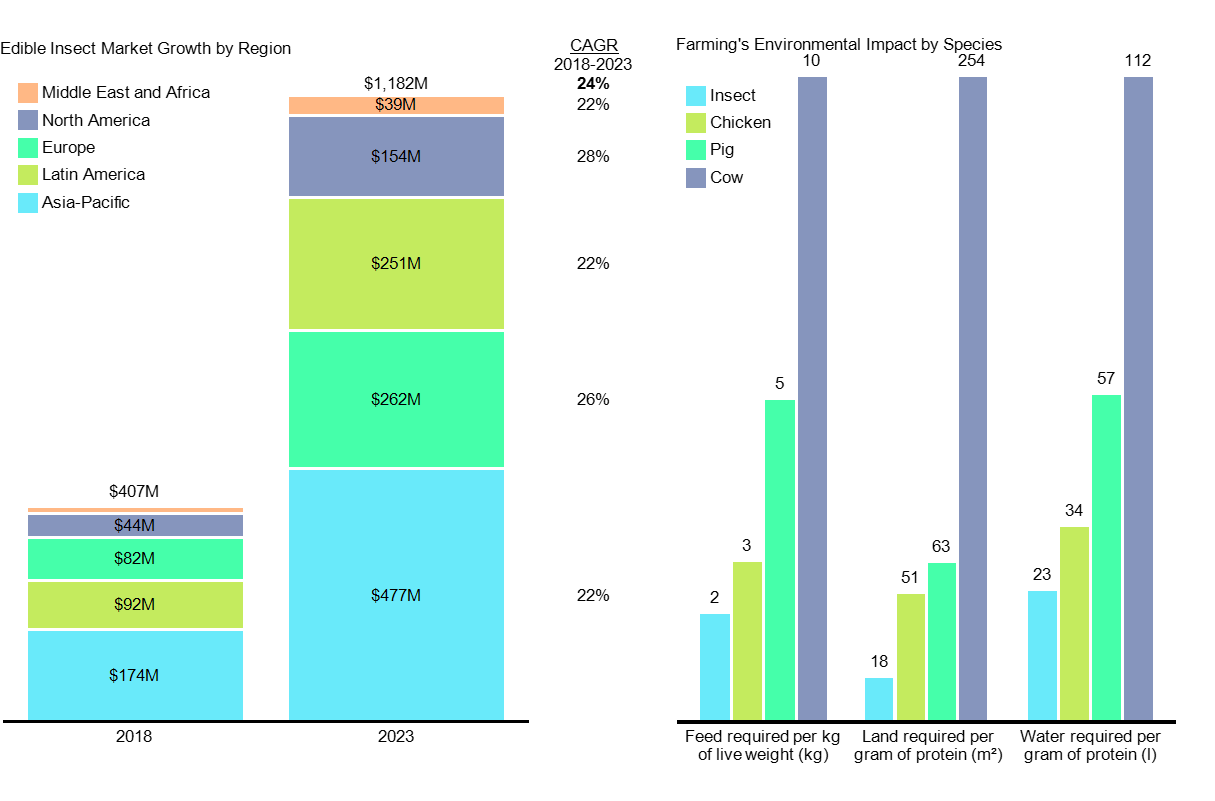 Bar charts show growth in edible insect market and relative impact of insect farming on the environment.