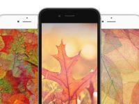 sfondi della settimana autunno iPhone