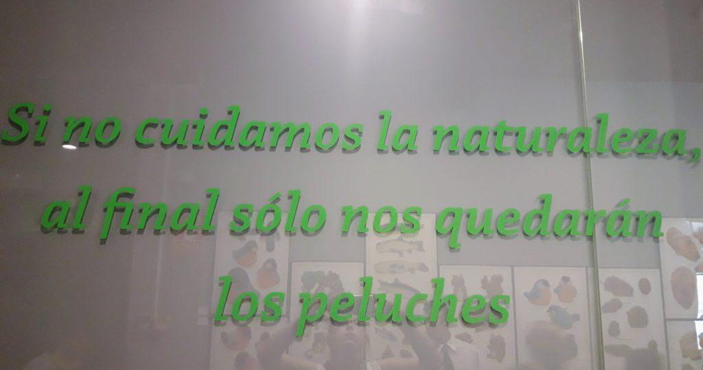 museu ciencias naturais madrid peluches
