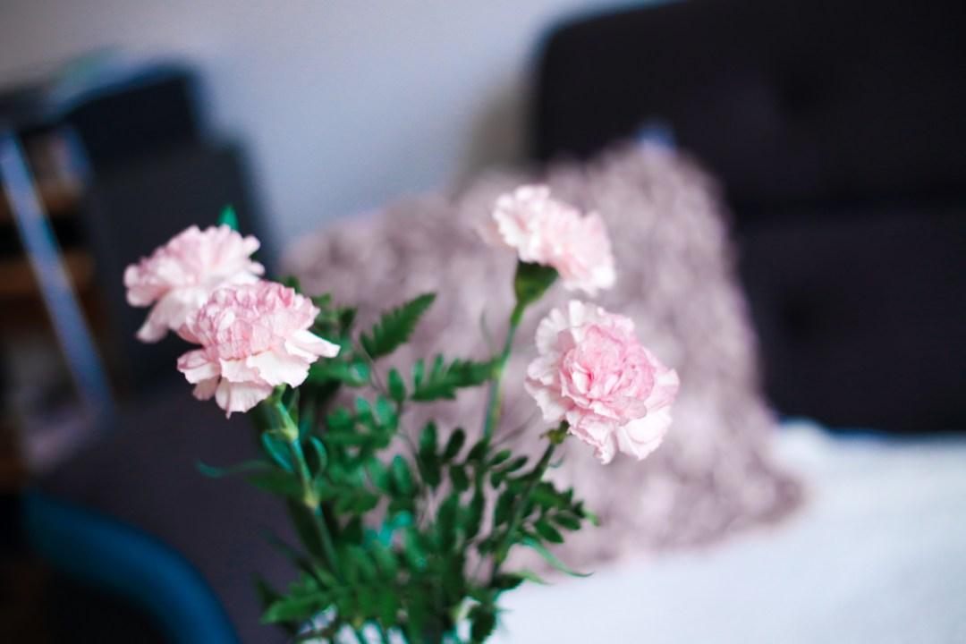 wunderschöne Nelken passend zu dem modernen Wohnzimmer