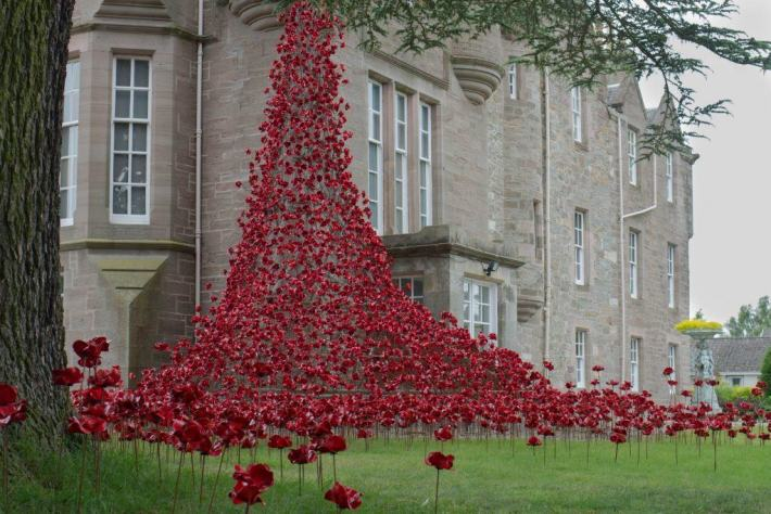Poppies: Weeping Window, Blackwatch Museum