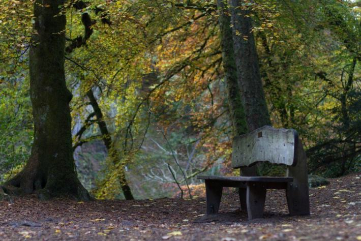 The Hermitage, Perthshire, Travel Guide