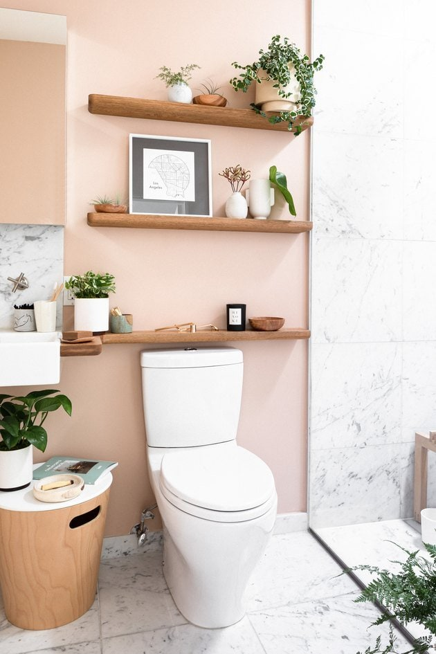 salmon pink paint, bathroom, marble tiles, shelves, plants