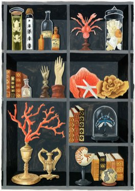 cabinet-de-curiosites-CSUP11-melanie-voituriez