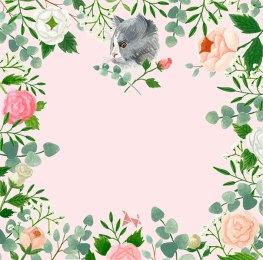 couronne-chat-vetinparis-melanie-voituriez