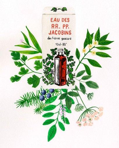 eau-des-jacobins-CSUP5