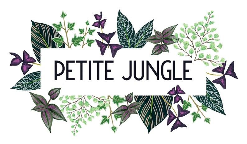 logo-rectangle-petite-jungle-melanievoituriez