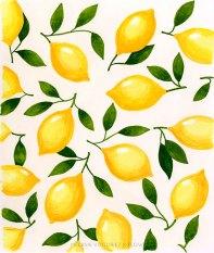 melanie-voituriezxflow-lemon