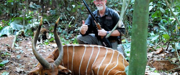 Trophy bongo hunting in Cameroon Africa, film and short story done by Melcom Van Staden