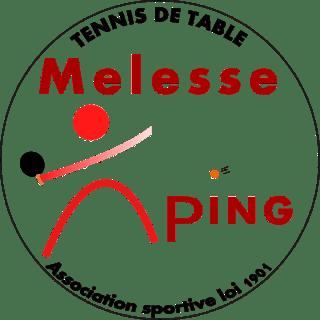 Melesse Ping