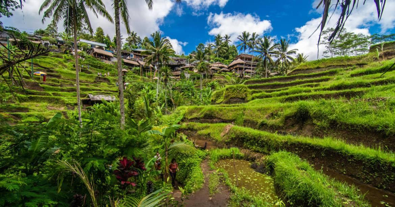 Ubud, Indonésia - eleita uma das melhores cidades para visitar