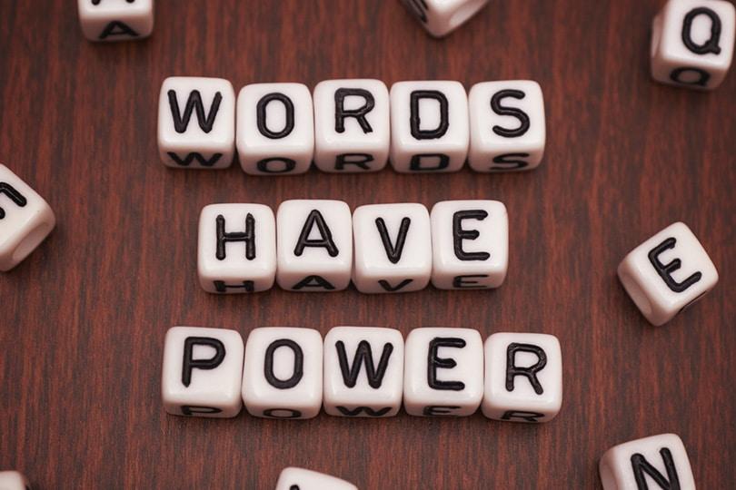 Kelimelerini Değiştir, Dünyan Değişsin