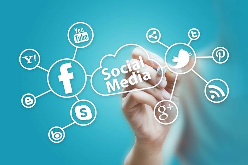 Sosyal Medya İş Başvurularında Neden Önemli