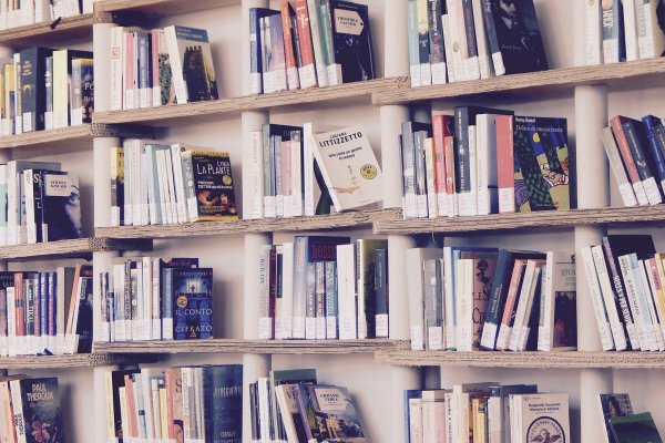 Self Publishing, Traditional Publishing or a Combination?