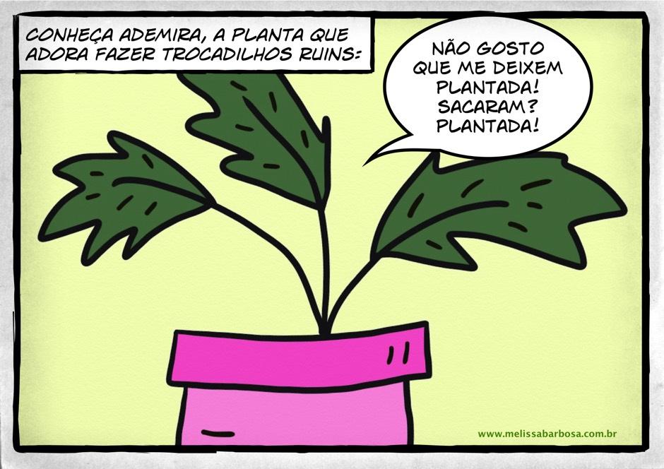 Conheça Ademira, a planta que adora fazer trocadilhos ruins. Não gosto que me deixem plantada. Sacaram? Plantada!