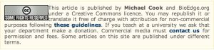 http://www.bioedge.org/index.php/bioethics/bioethics_article/10530#comments