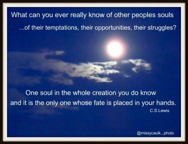 C.S.Lewis Quote (my photo)