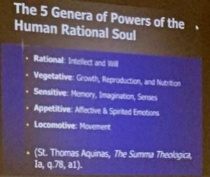 The soul Thomas Aquinas