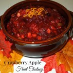 Cranberry Apple Fruit Chutney