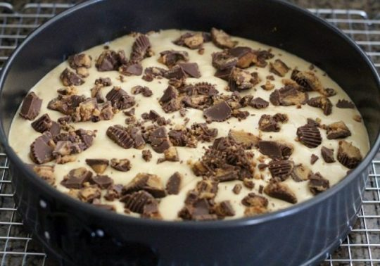 Peanut Butter Cup Cheesecake With A Nutter Butter Crust