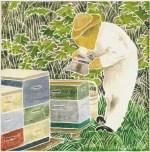 Ημερίδα Μελισσοκομίας για αρχάριους στο ΚΠΕ Φιλιατών