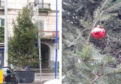 Melito - albero di Natale piazza Cappelluccia