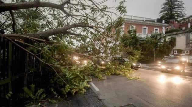 Napoli - vento alberi caduti