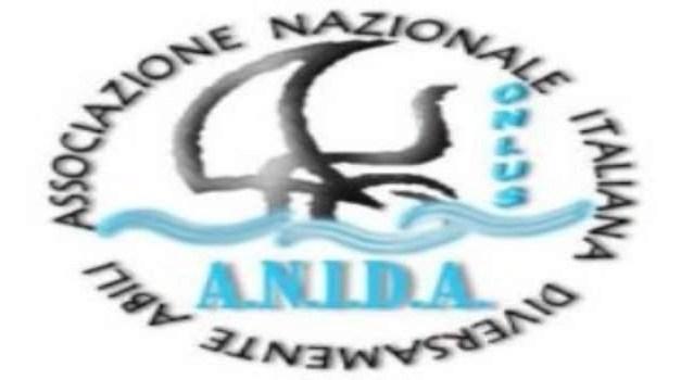 """A.N.I.D.A. Onlus, il Presidente propone una riforma del """"Contrassegno Speciale H per persone con Disabilità di deambulazione impedita o ridotta"""""""