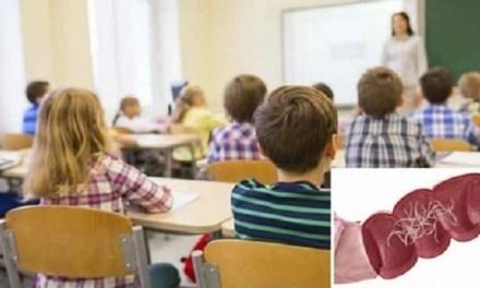 Allarme vermi intestinali in alcune scuole del napoletano